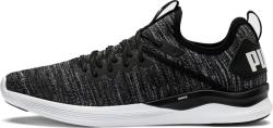 Incaltaminte Puma IGNITE Flash evoKNIT - 44, 5 EU | 10 UK | 11 US | 29 CM - 11teamsports - 311,00 RON